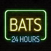 24 Hours von The Bats