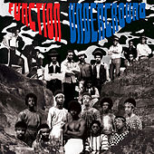 Function Underground: The Black and Brown American Rock Sound 1969-1974 by Various Artists