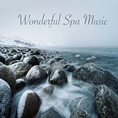 Wonderful Spa Music by Wellness