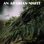 An Arabian Night de Balti