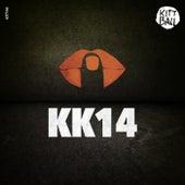 Kittball Konspiracy Vol. 14 by Various Artists