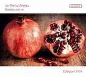 Zelenka: 6 Sonatas, ZWV 181 by Collegium 1704