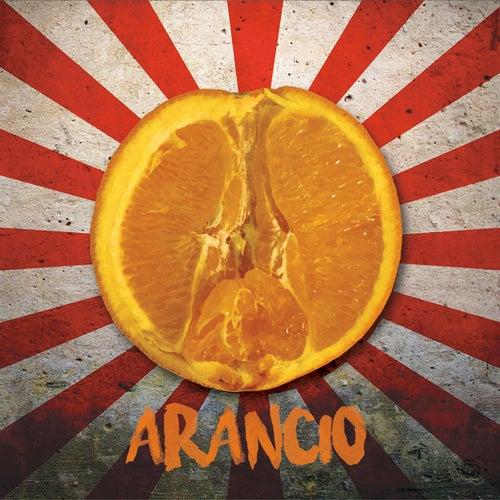 Disco Arancio by Ink