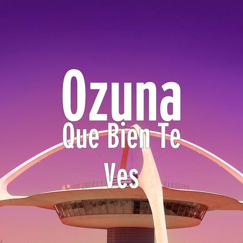 Que Bien Te Ves de Ozuna