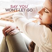 Say You Won't Let Go by Amber