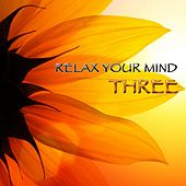 Relax Your Mind Three by Various Artists