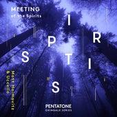 Meeting of the Spirits by Matt Haimovitz