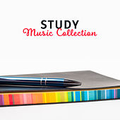 Study Music Collection – Classical Sounds for Easier Learning, Deep Concentration, Stress Relief, Music to Work, Mozart, Beethoven by Studying Music