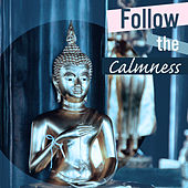 Follow the Calmness – Sounds for Meditation, Zen Music, Calmer Mantra, Exercise Your Brain, Yoga Music, Deep Focus by Reiki