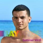 Gay Pride Summer, Vol. 6 by Various Artists