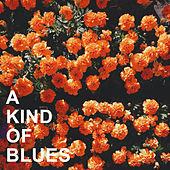 A Kind of Blues von Various Artists