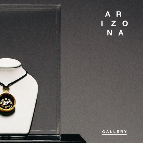 Gallery by A R I Z O N A