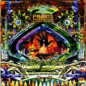 Play & Download Profanation: Preparation for a Coming Darkness by Praxis | Napster