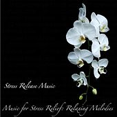Play & Download Music for Stress Relief: Relaxing Melodies by Stress Release Music | Napster