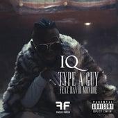 Type of Guy (feat. David Monroe) by IQ