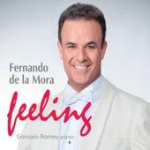Feeling by Fernando de la Mora