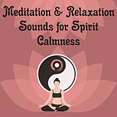 Meditation & Relaxation Sounds for Spirit Calmness – Buddha Lounge, Inner Peace, Stress Relief by New Age