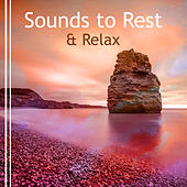 Sounds to Rest & Relax – New Age to Calm Down, Soothing Sounds to Relax, Peaceful Waves, Healing Therapy by Reiki