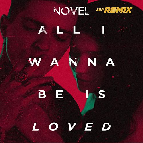 All I Wanna Be Is Loved (Sep Remix) by Novel