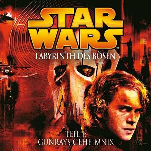Labyrinth des Bösen - Teil 1: Gunrays Geheimnis von Star Wars