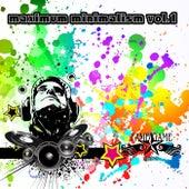 Maximum Minimalism, Vol. 1 by Various Artists