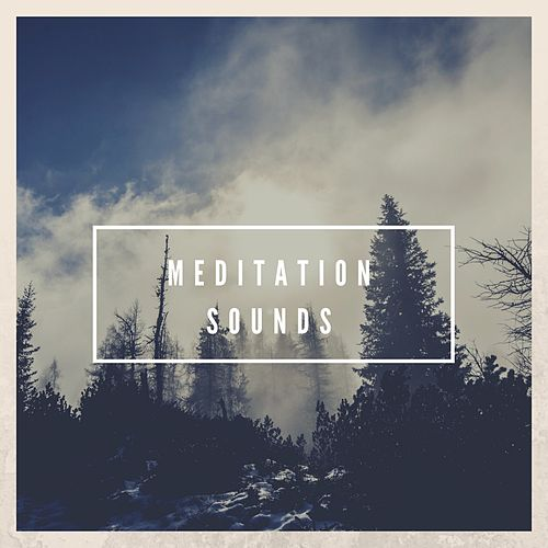 Meditation Music by Meditation Music