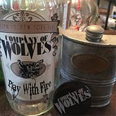 Play with Fire by Company Of Wolves