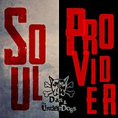 Soul Provider by Dan