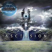Ascension LP by Various Artists