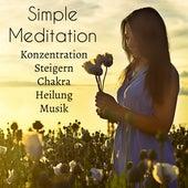 Simple Meditation - Konzentration Steigern Chakra Heilung Musik für Ruhig Schlafen Tägliche Meditation Energiezentrum mit Natur New Age Instrumental Geräusche by Various Artists