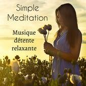 Simple Meditation - Musique détente relaxante pour cours de yoga retraite de méditation energie chakra avec sons de la nature new age instrumentaux by Various Artists
