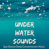 Under Water Sounds - Spa Nature Deep Concentration Music for Best Relaxation Healing Massage Spiritual Retreats with Instrumental New Age Sounds by Rainforest Music Lullabies Ensemble