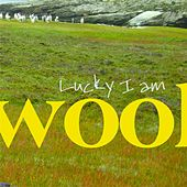 Lucky I Am by Wool