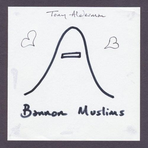 Bannon Muslims by Tony Alderman