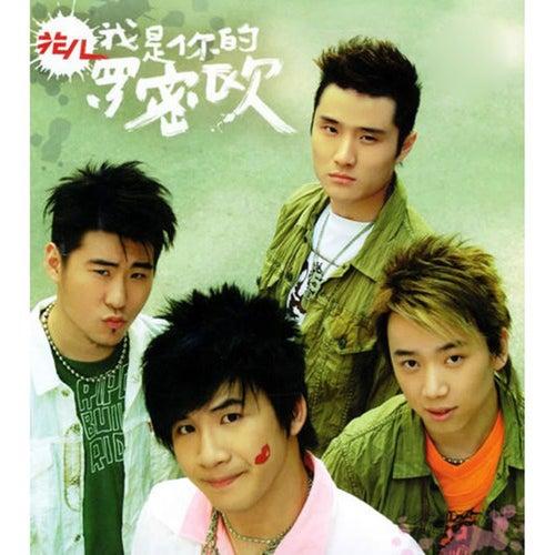 Wo Shi Ni De Luo Mi Ou by Flowers