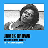 Try Me (Remastered) de James Brown