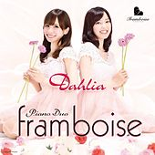 Dahlia by Piano Duo framboise