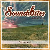 Soundsbites from ADN, Vol. 2 by Various Artists