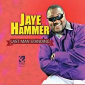 Last Man Standing by Jaye Hammer
