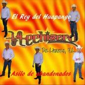 El Rey del Huapango by Hechizero De Linares
