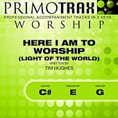 Here I Am to Worship - Light of the World (Worship Primotrax) [Performance Tracks] - EP by Various Artists