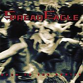 Play & Download Open To The Public by Spread Eagle | Napster