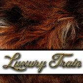 Luxury Train de Rash