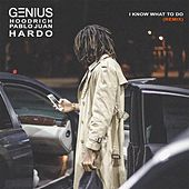 I Know What To Do (Remix) [feat. Hoodrich Pablo Juan & Hardo] by Genius