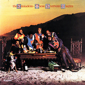 Play & Download Those Southern Knights by The Crusaders | Napster