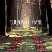 Sounds of Piano (Works of Glass, Einaudi, Richter & Woodapple) by Various Artists