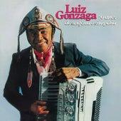 70 Anos de Sanfona e Simpatia by Luiz Gonzaga