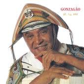 De Fiá Pavi by Luiz Gonzaga