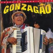 Forró de Cabo a Rabo by Luiz Gonzaga
