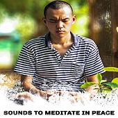 Sounds to Meditate in Peace – Calming Sounds, Meditate with New Age Music, Inner Silence, Soul Rest by Meditation Awareness